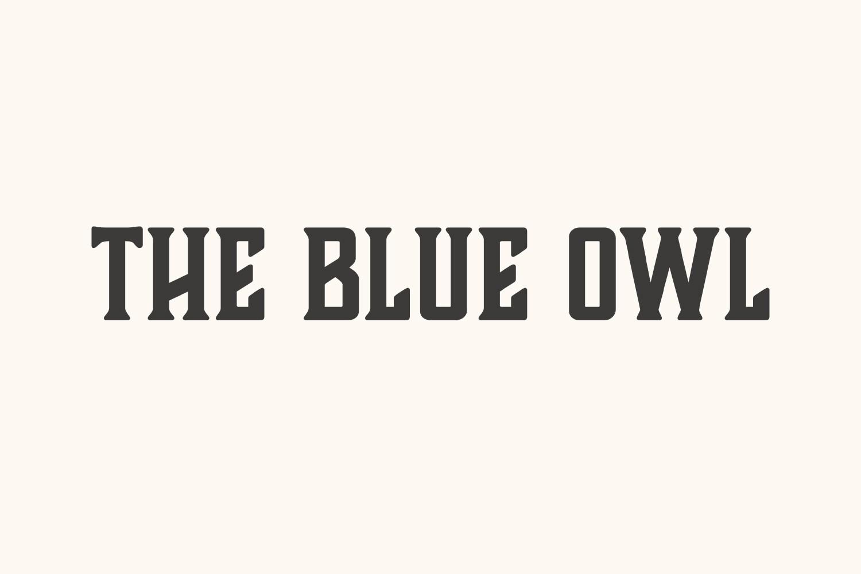 The Blue Owl Café